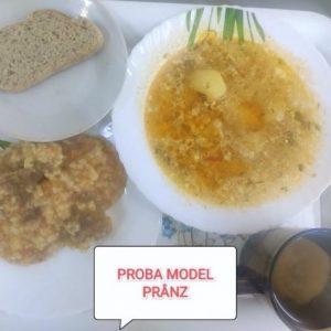 Procesul alimentar în sectorul Ciocana